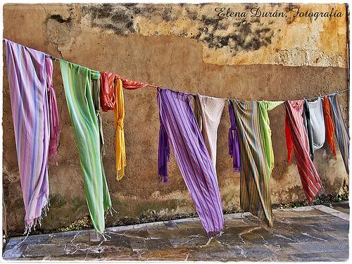 Haizeak nora, zapiak hara ibili (FlickrCC, Elena Durán)